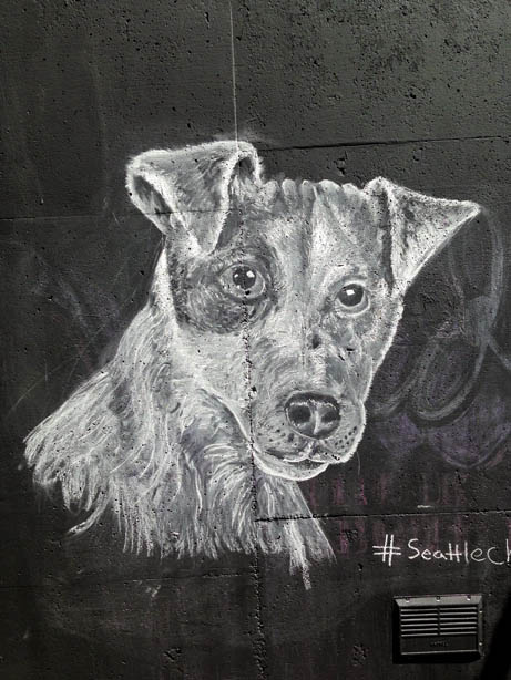chalk-wall-seattle-artist-patrick-perkins-seattle-pike-st-press-