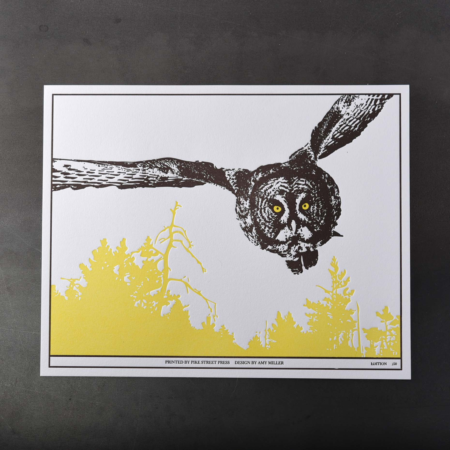amy miller owl over trees letterpress print